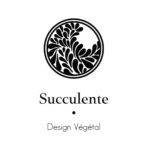 Succulente-design-vegetal